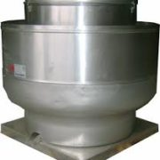 extractor-en-hongo-3